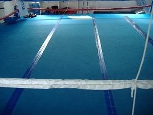 唯心ボクシングジムマット 004.JPG